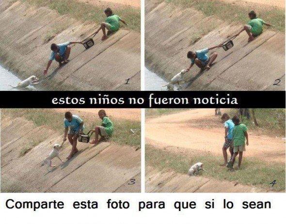 niños salvando perro