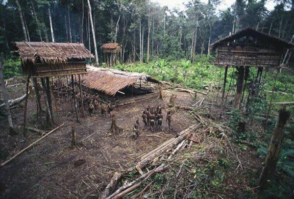 La extraña tribu Korowai Korowai-13-