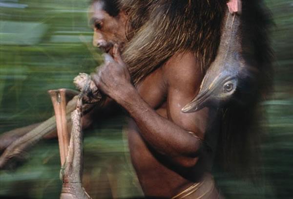 La extraña tribu Korowai (10)