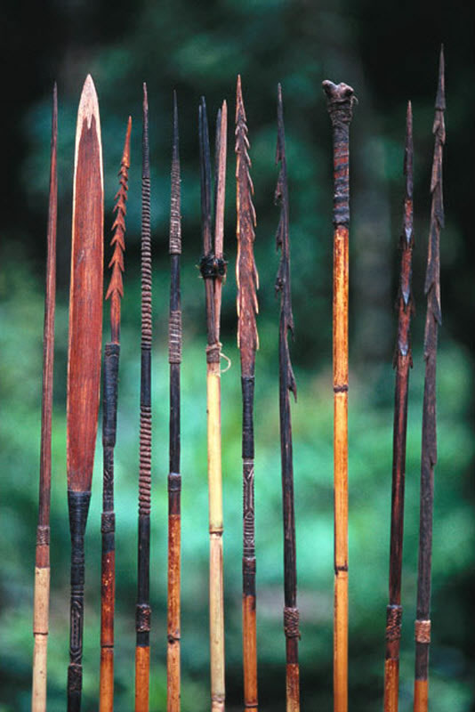La extraña tribu Korowai (9)