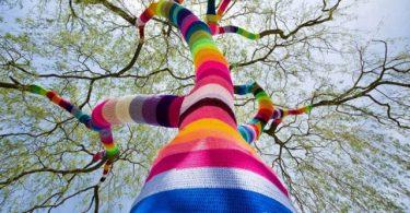 Urban Knitting (22)