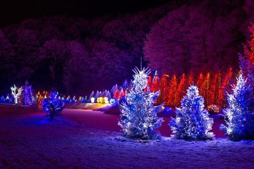 10 hechos curiosos sobre Navidad (4)