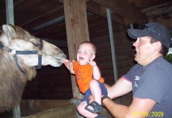 Paternidad?, lo estas haciendo mal Here-eat-my-kid