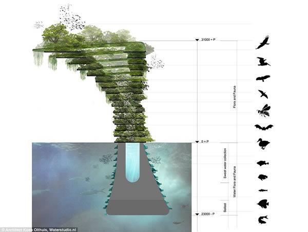 Sea Tree 7