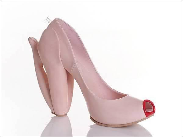 zapatos curiosos (8)