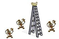 cinco monos