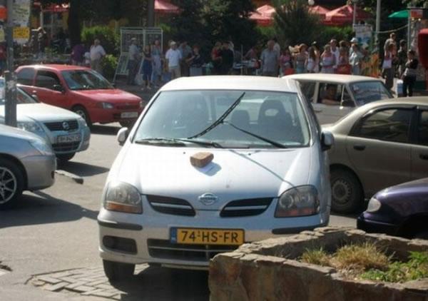 Autos Venganza (30)
