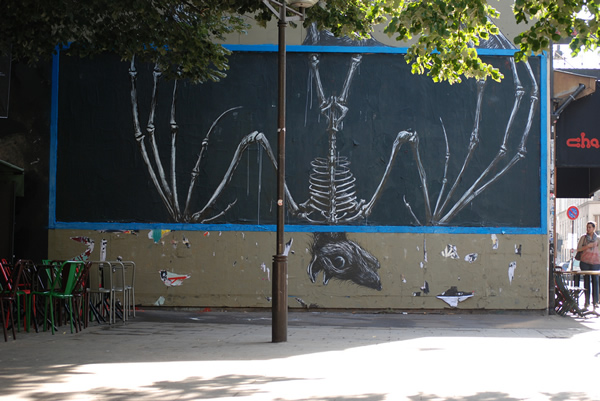 Graffiti Animales (1)