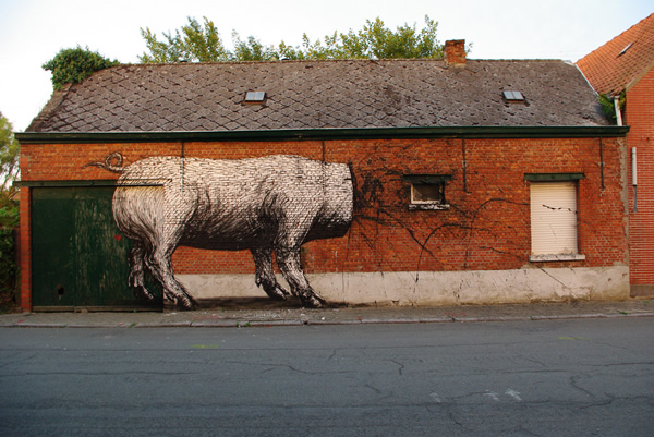 Graffiti Animales (6)