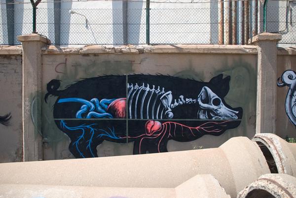Graffiti Animales (11)