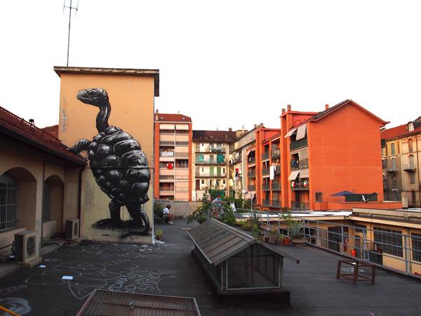 Graffiti Animales (13)
