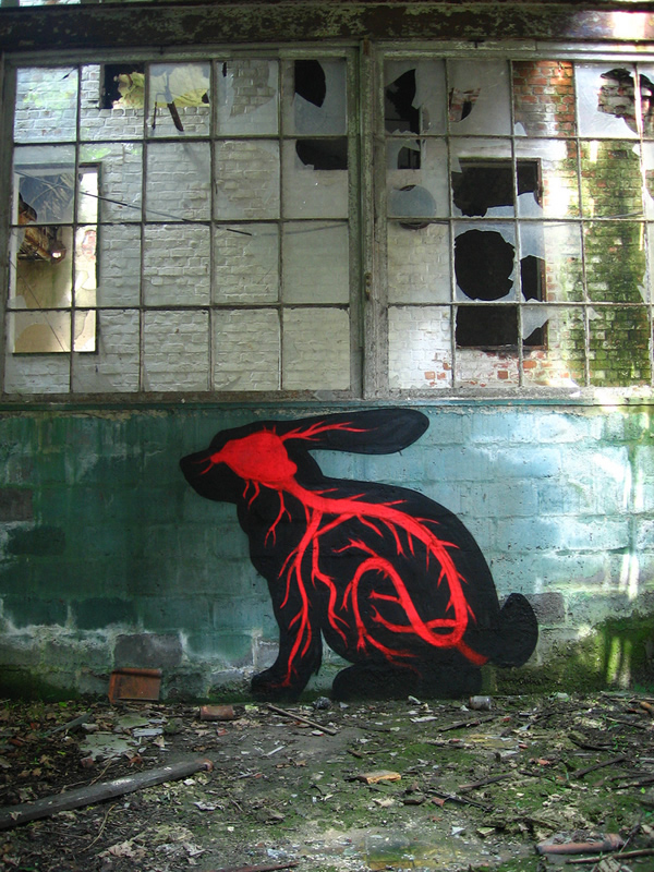 Graffiti Animales (19)