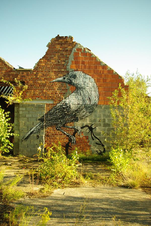 Graffiti Animales (40)