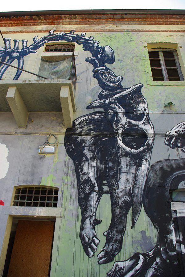 Graffiti Animales (37)