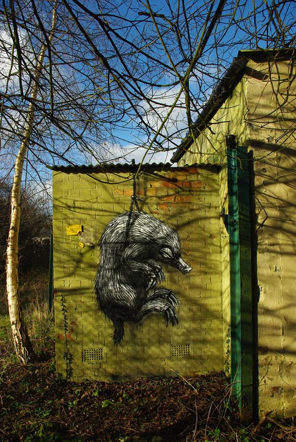 Graffiti Animales (43)