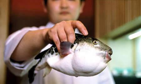 cosas que no sabías de Japón (8)
