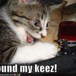 perdi llaves