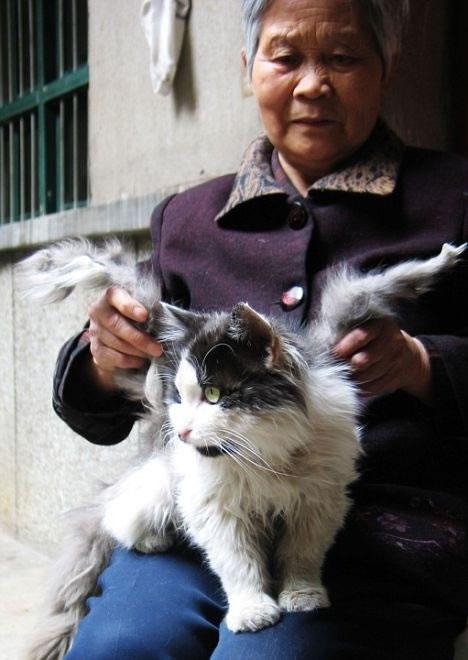 Solo en China (24)
