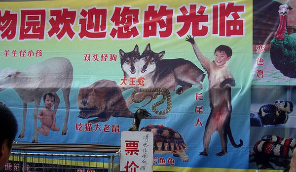 Solo en China (19)