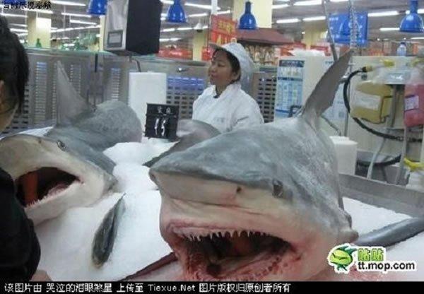 Solo en China (1)