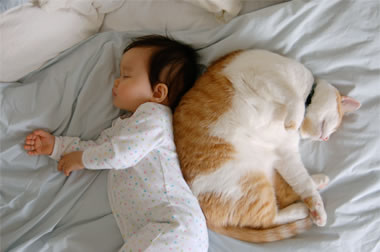 bebes asiaticos (2)