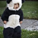bebes asiaticos (1)