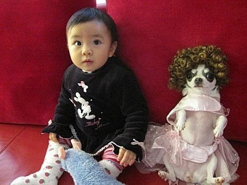 bebes asiaticos (17)
