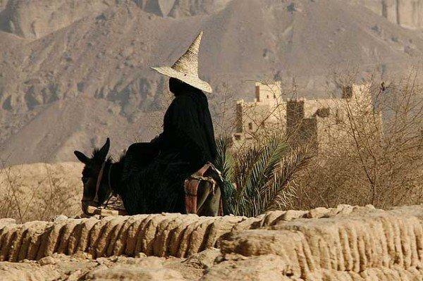 burro yemen