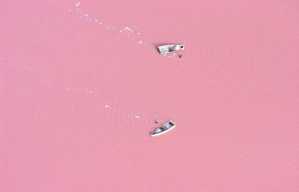 Lago rosa (5)