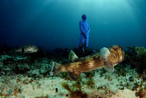 esculturas marinas (11)