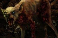 perro chihuahua leyenda