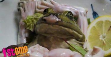 rana viva japon (3)