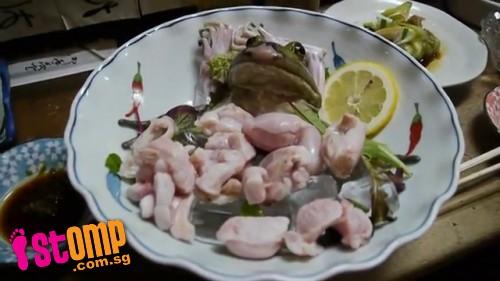 Rana servida viva en restaurante japonés Frog_19jpg1338863342583-data