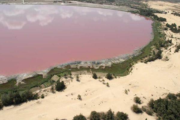 Lago rosa (1)