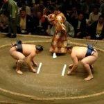 Peleas de Sumo – Fotografías