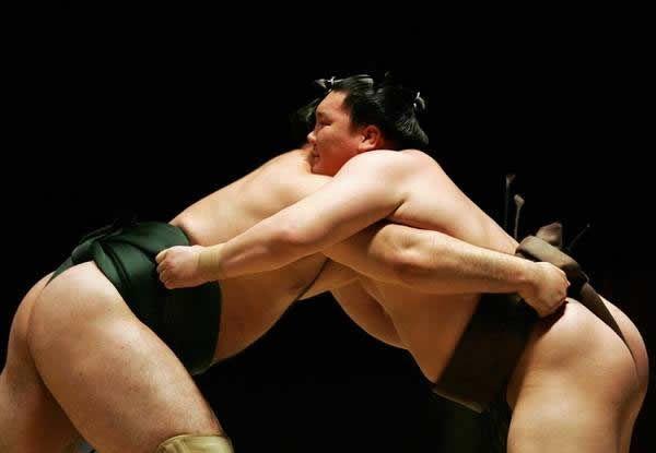pela sumo japon (9)