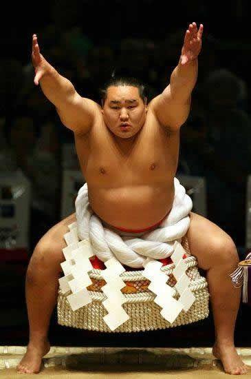 pela sumo japon (8)