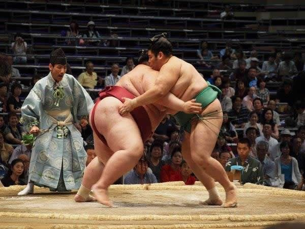 pela sumo japon (7)
