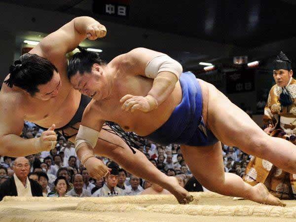 pela sumo japon (6)