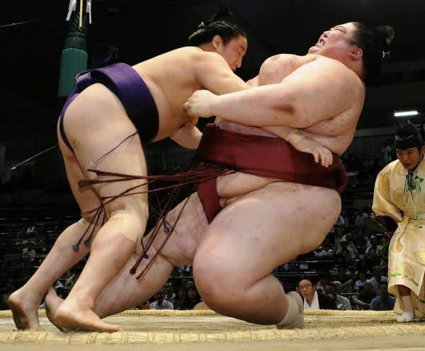 pela sumo japon (5)
