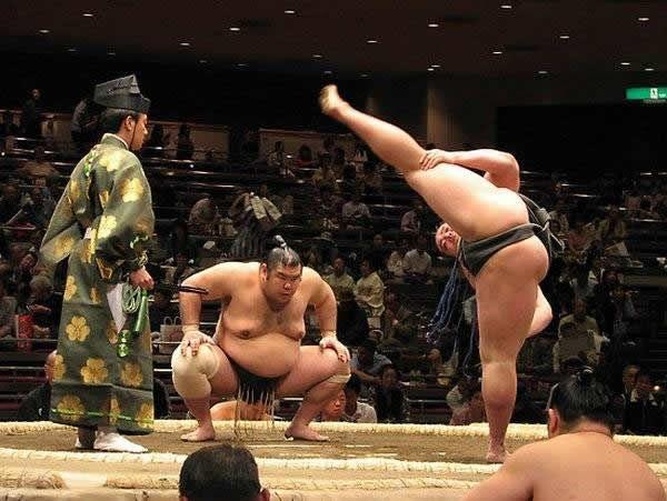 pela sumo japon (4)