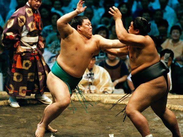 pela sumo japon (3)