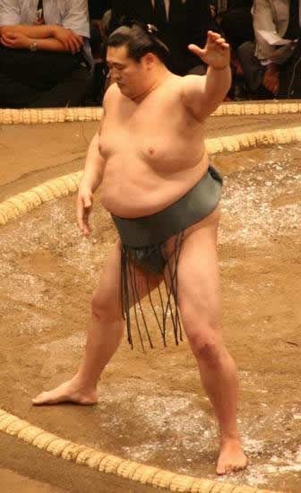 pela sumo japon (2)
