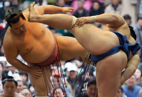 pela sumo japon (21)