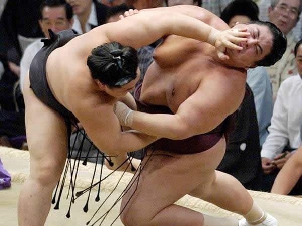 pela sumo japon (20)