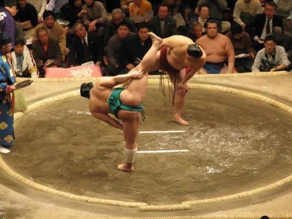 pela sumo japon (18)