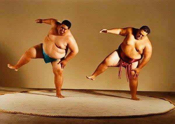 pela sumo japon (17)