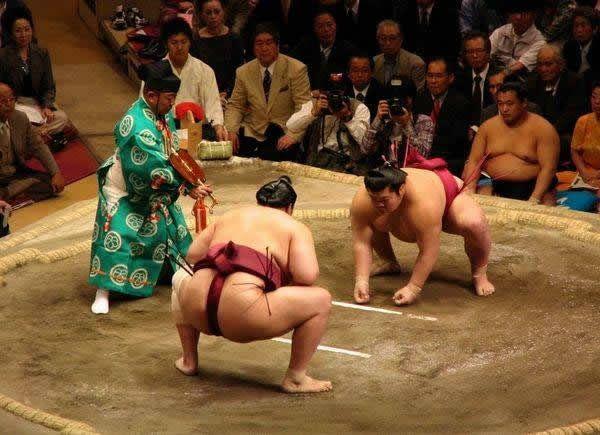 pela sumo japon (15)
