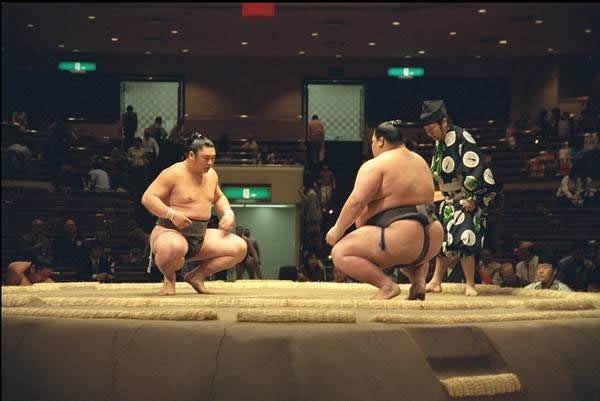 pela sumo japon (14)