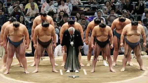 pela sumo japon (10)